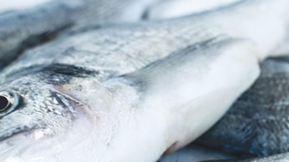 تفسير حلم تنظيف قشور السمك للعزباء